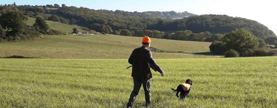 Réforme de la police de l'environnement et du droit de la chasse